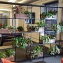 Steel Wall Divider / Shelving